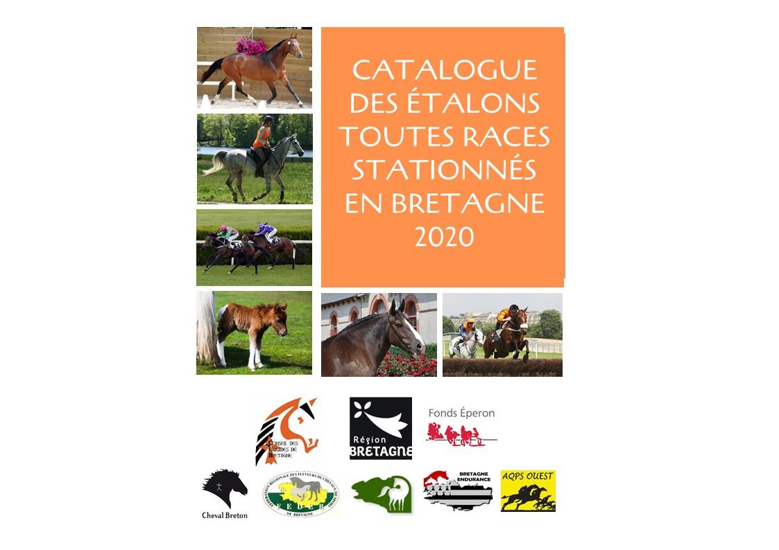 Catalogue en ligne des étalons toutes races stationnés en Bretagne