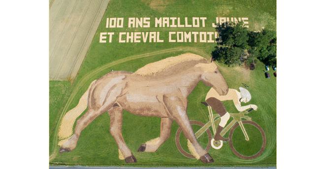 La fresque du Cheval Comtois remporte le Prix Poulidor !