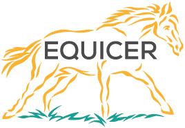 L'observatoire économique 2019 d'EquiCER est en ligne