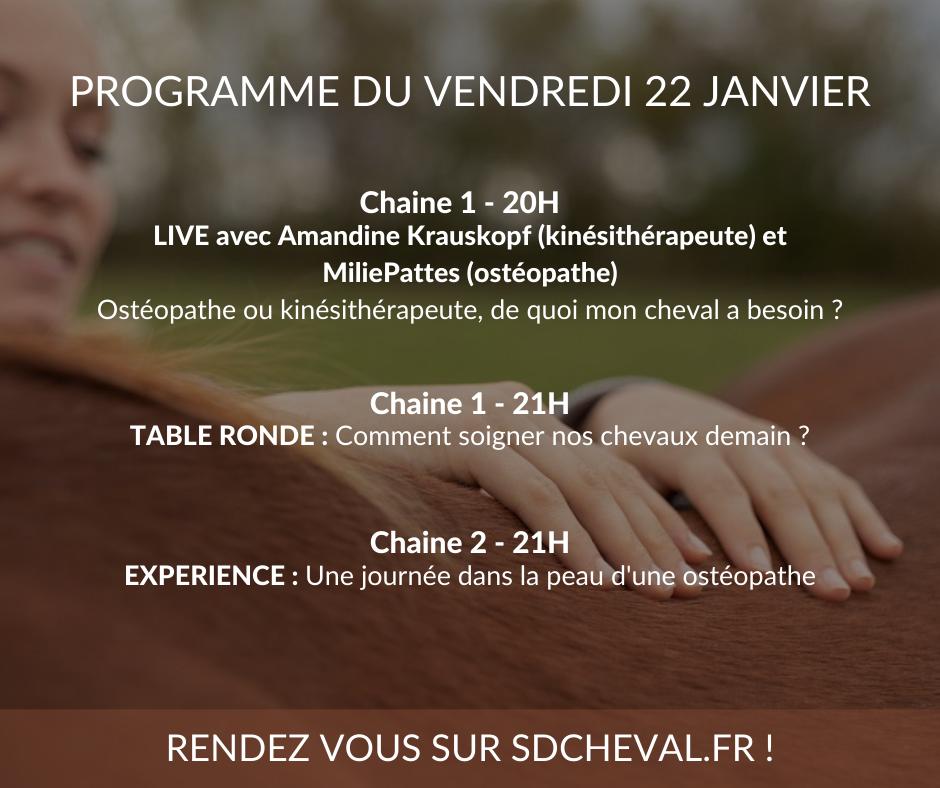 Programme du live de Vendredi sur le site internet de la Semaine Digitale !!