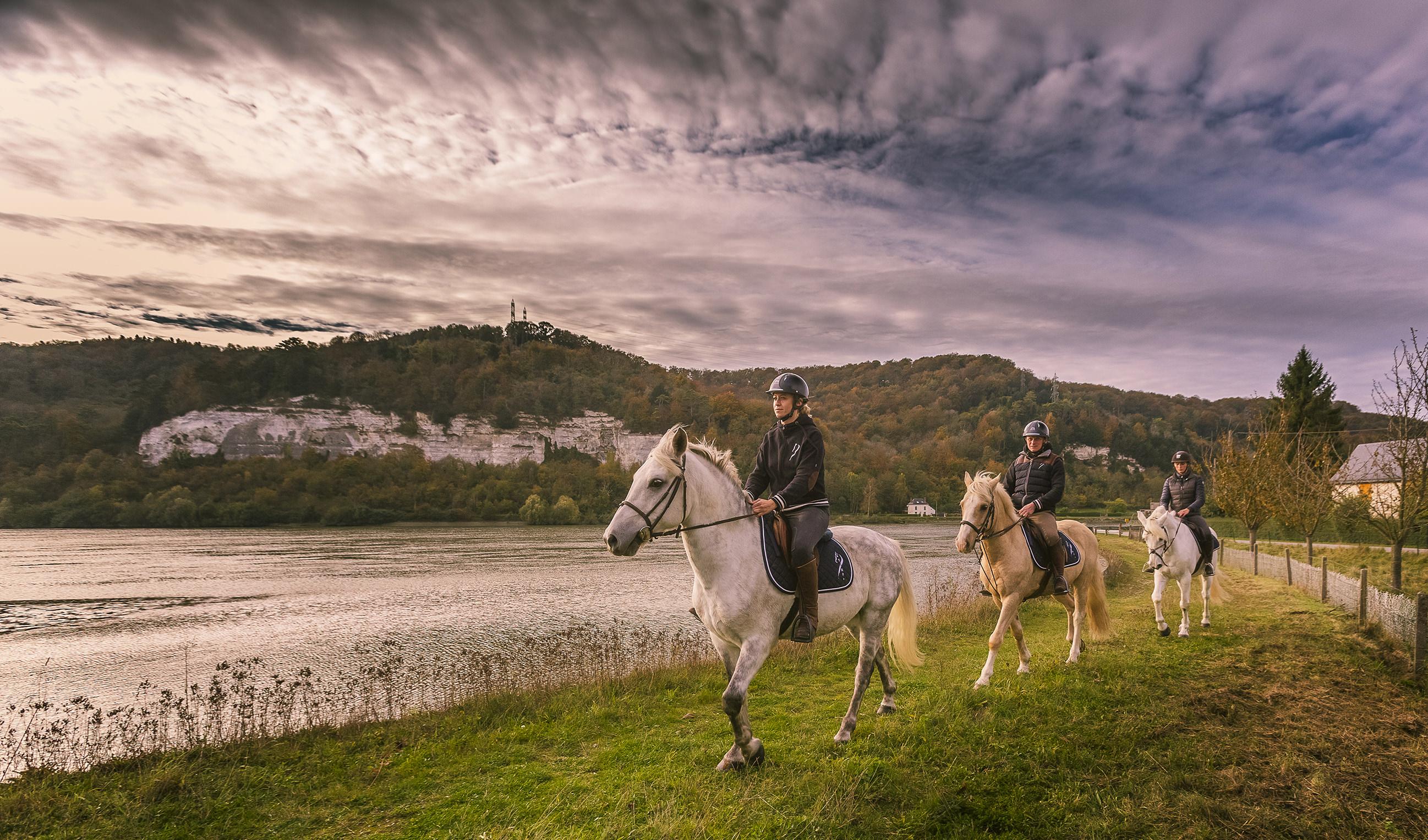 Tourisme lié au cheval : ne manquez pas les conférences en ligne de Normandie Tourisme