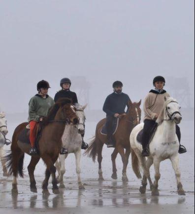 La Plaine-sur-Mer. Joalland équitation accueille malgré les contraintes sanitaires