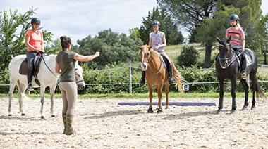 Synthèse enseignants d'équitation indépendants