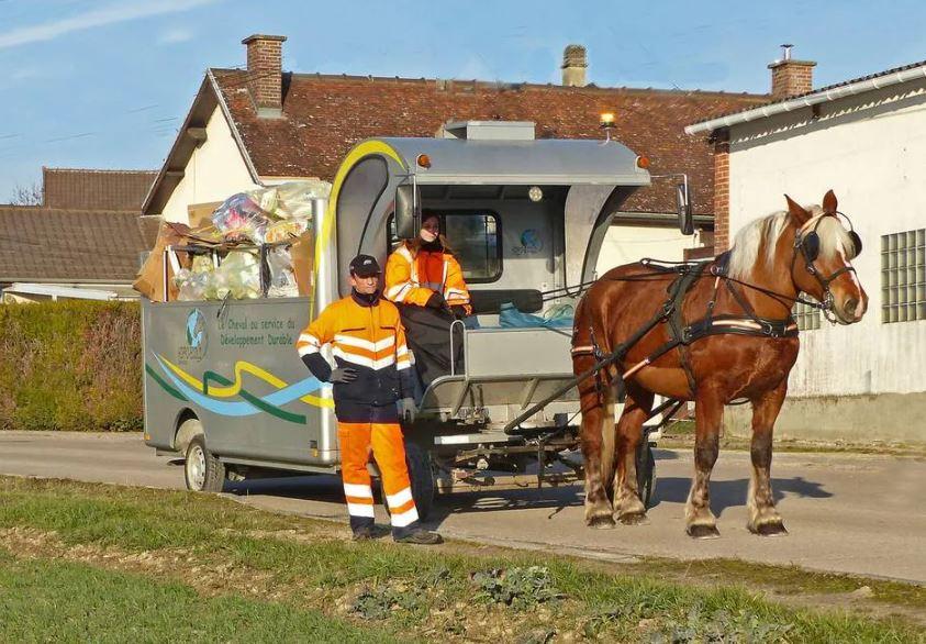 Le Mans. Un cheval va collecter le tri sélectif dans la cité Plantagenêt