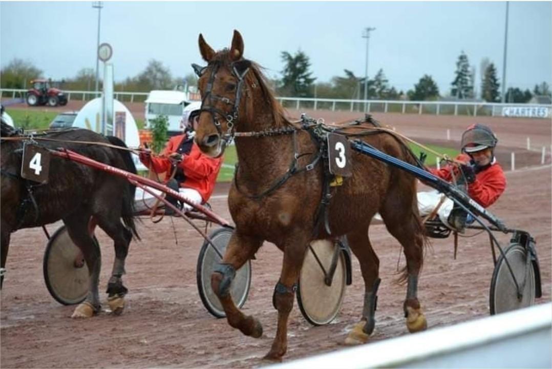 Jean-François Moquet sillonne la France pour gagner des courses de chevaux