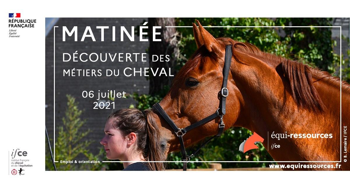 Matinée découverte des métiers de la filière cheval le 6 juillet 2021