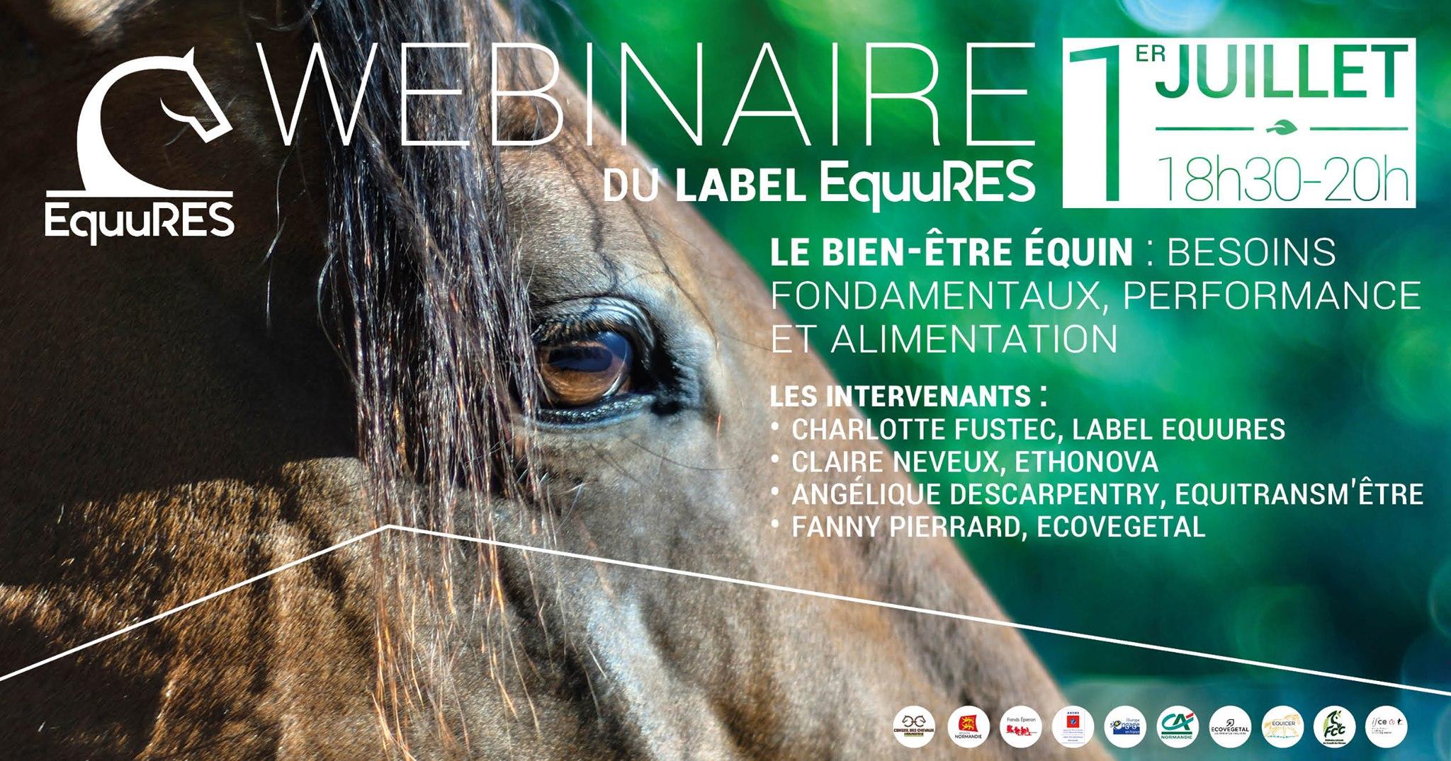 Webinaire du label EquuRES : Le bien-être équin, besoins fondamentaux, performance et alimentation