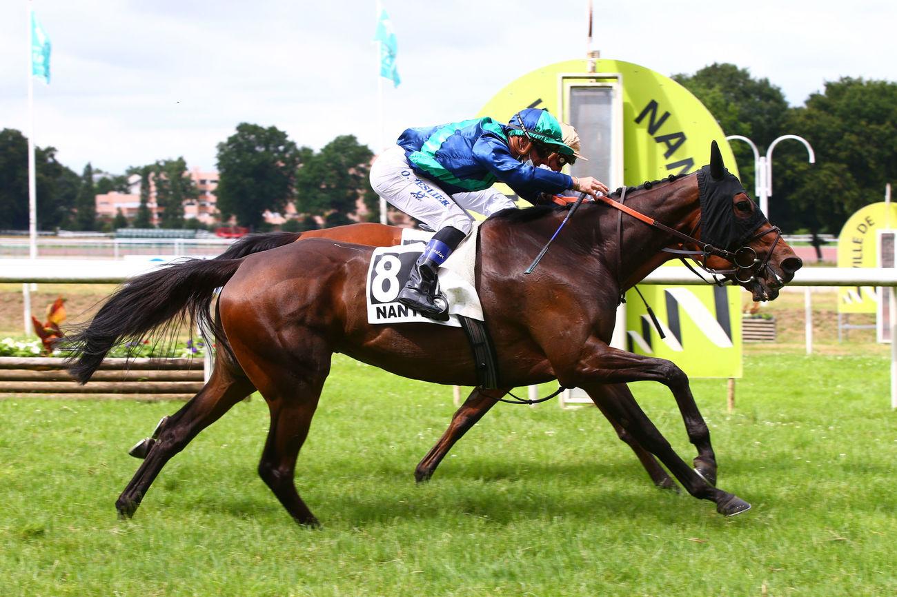 Grand Prix Anjou-Bretagne - Haras du Saz (L) : Padovana, un succès acquis de haute lutte