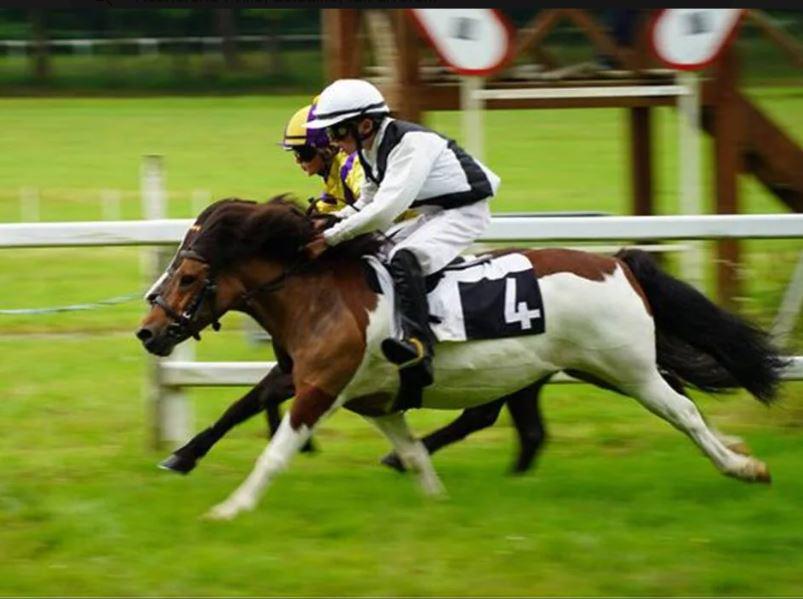 Sillé-le-Guillaume. Courses de poneys, le public présent et solidaire malgré la pluie