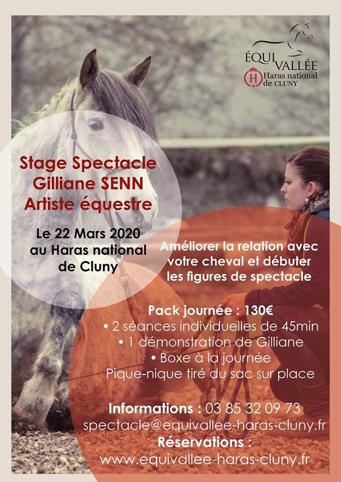 Stage Spectacle avec Gilliane Senn à Cluny