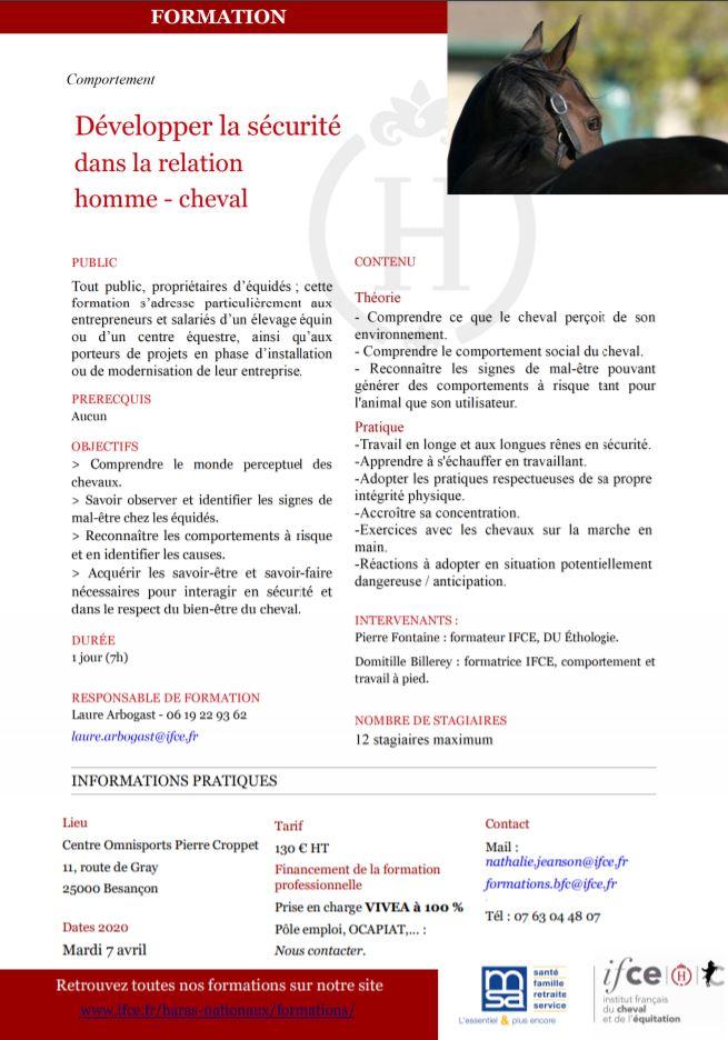 Formation IFCE/MSA : développer la sécurité dans la relation Homme/Cheval