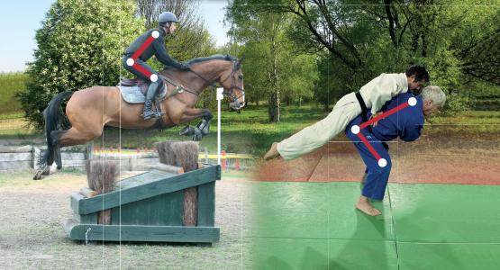 Equitation et judo : les transferts d'apprentissage