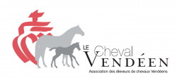 Concours modèle et allures foals et labellisation poulinières à Serigné et Sainte Perrine