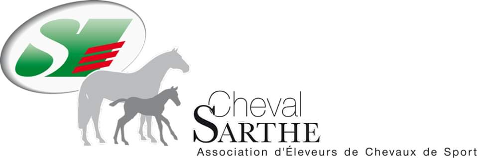 Concours Foal à la Milesse