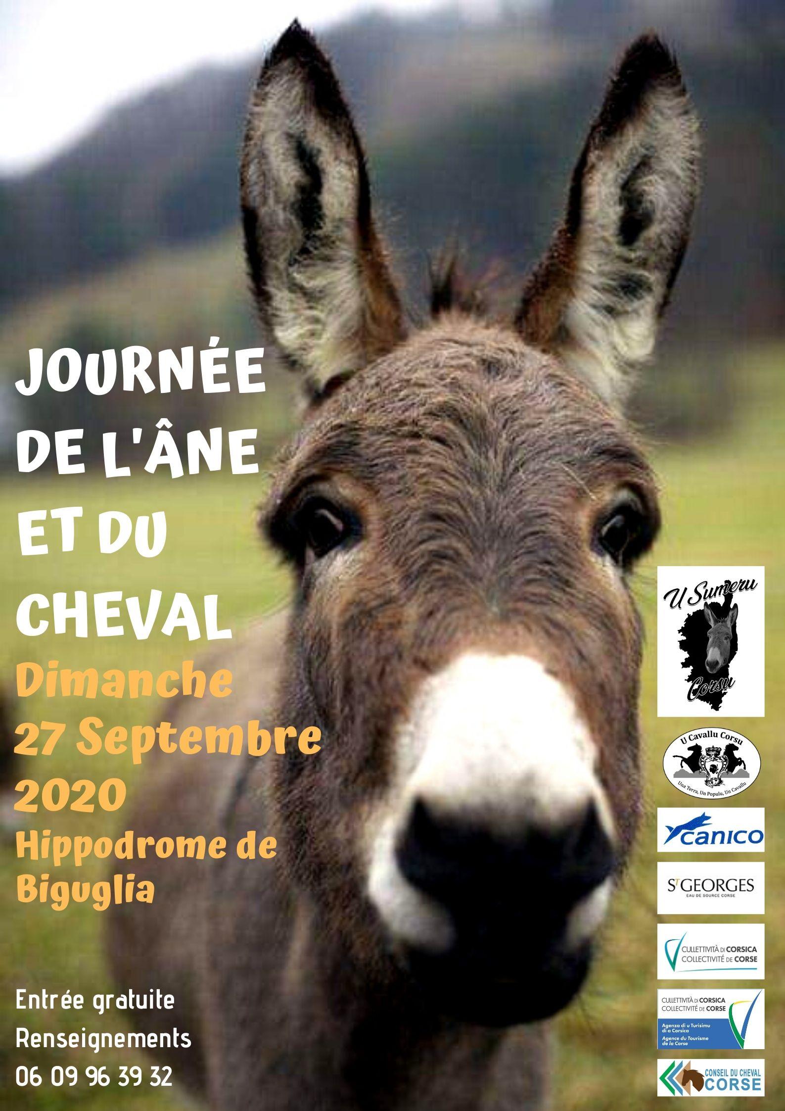Journée du cheval et de l'âne