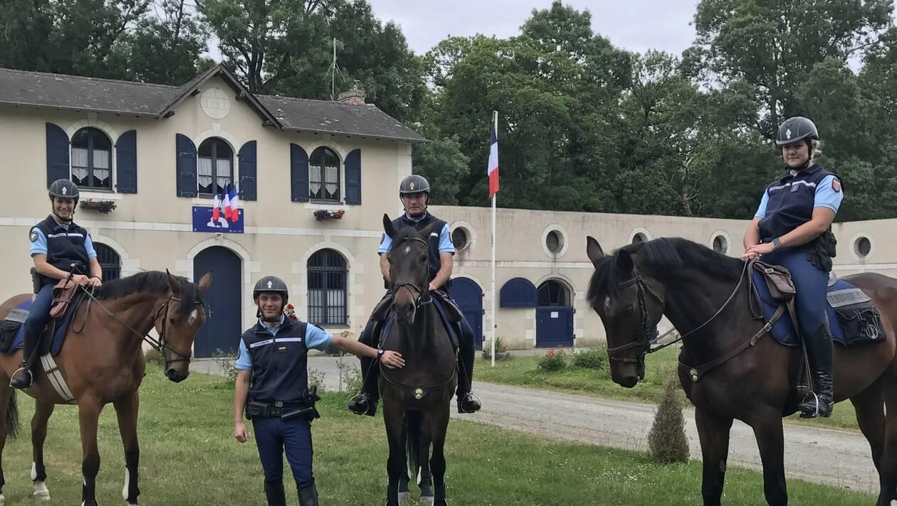 Près de Segré. Trois nouveaux chevaux rejoignent la Gendarmerie nationale