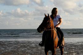 Une cavalière et son cheval vont parcourir 300 kilomètres sur les bords de Loire