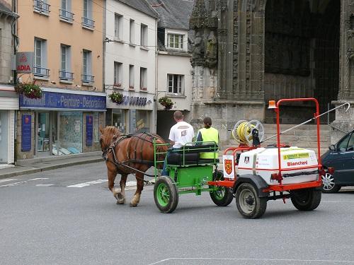 Le cheval territorial poursuit son développement en Bretagne