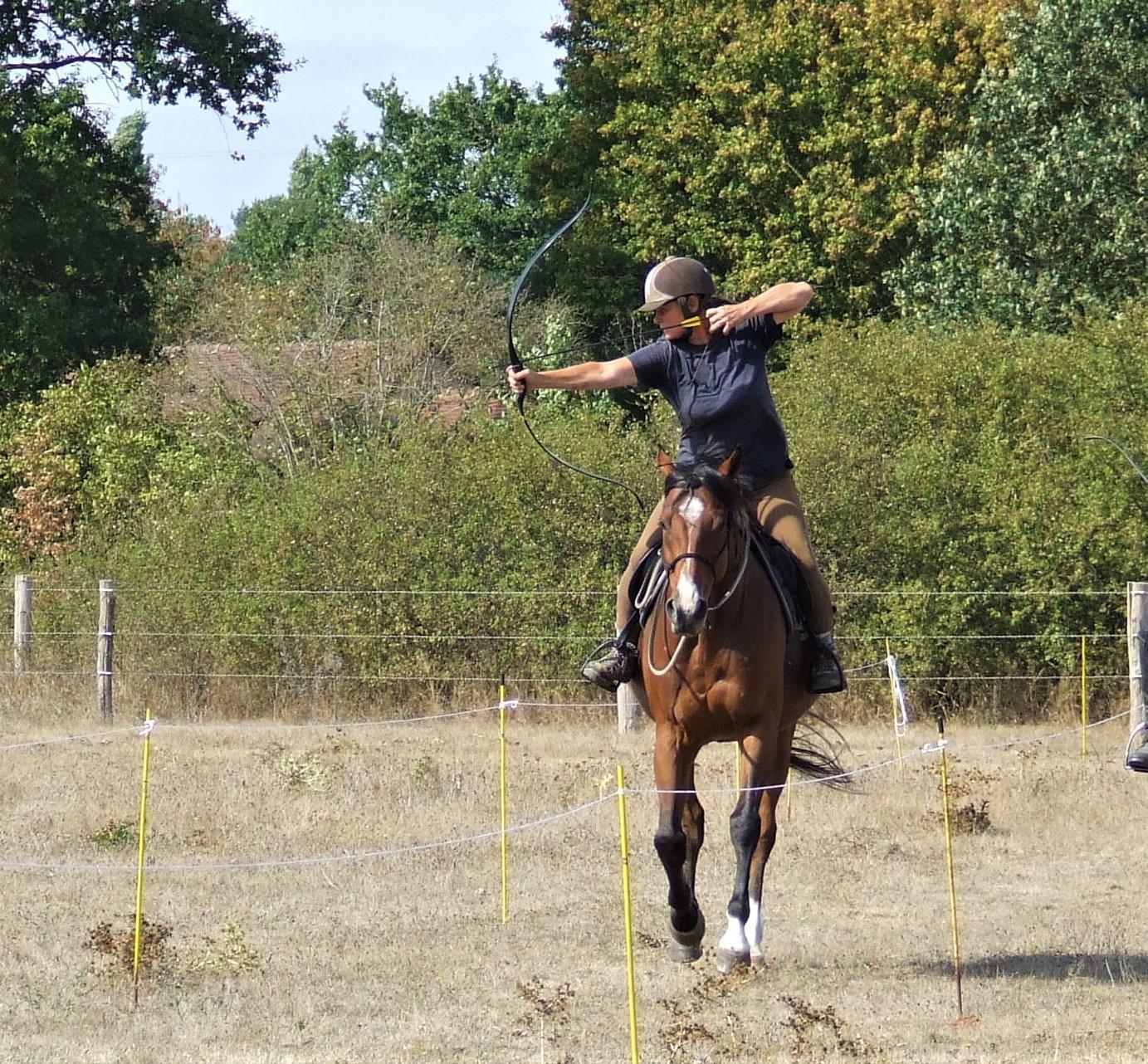 Venez découvrir l'équifeel et le tir à l'arc à cheval aux écuries du port d'Avoise