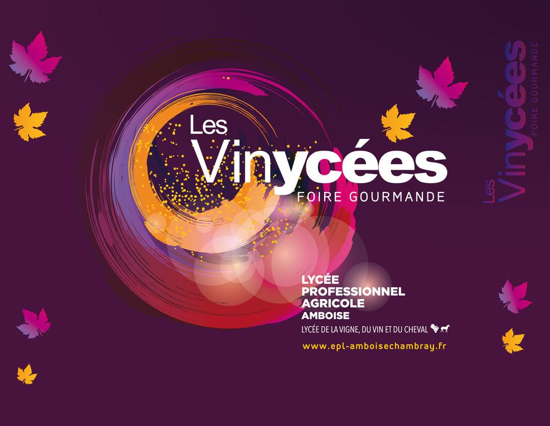 23ème vinycées au LPA d'Amboise avec la participation des ânes Grands Noirs du Berry et de l'IFCE les 18 et 19 mars